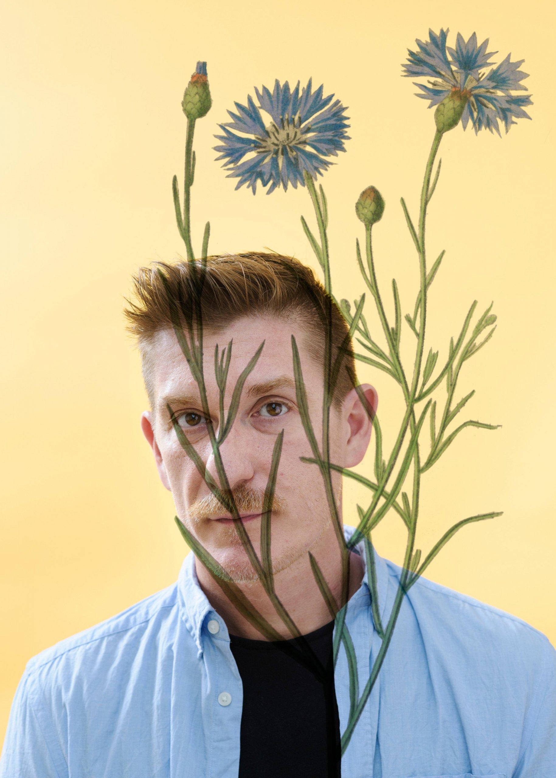 Centaurea_Cyanus__var_